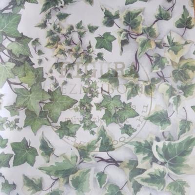 Decoupage papír (dekupázs) Tasotti 50*70cm - Borostyános